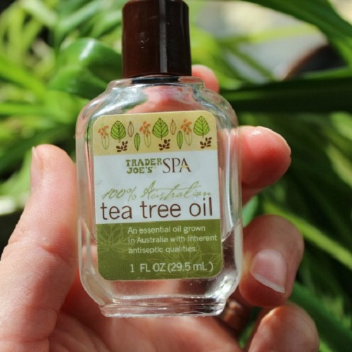 Tea Tree Oil - home remedy for acne