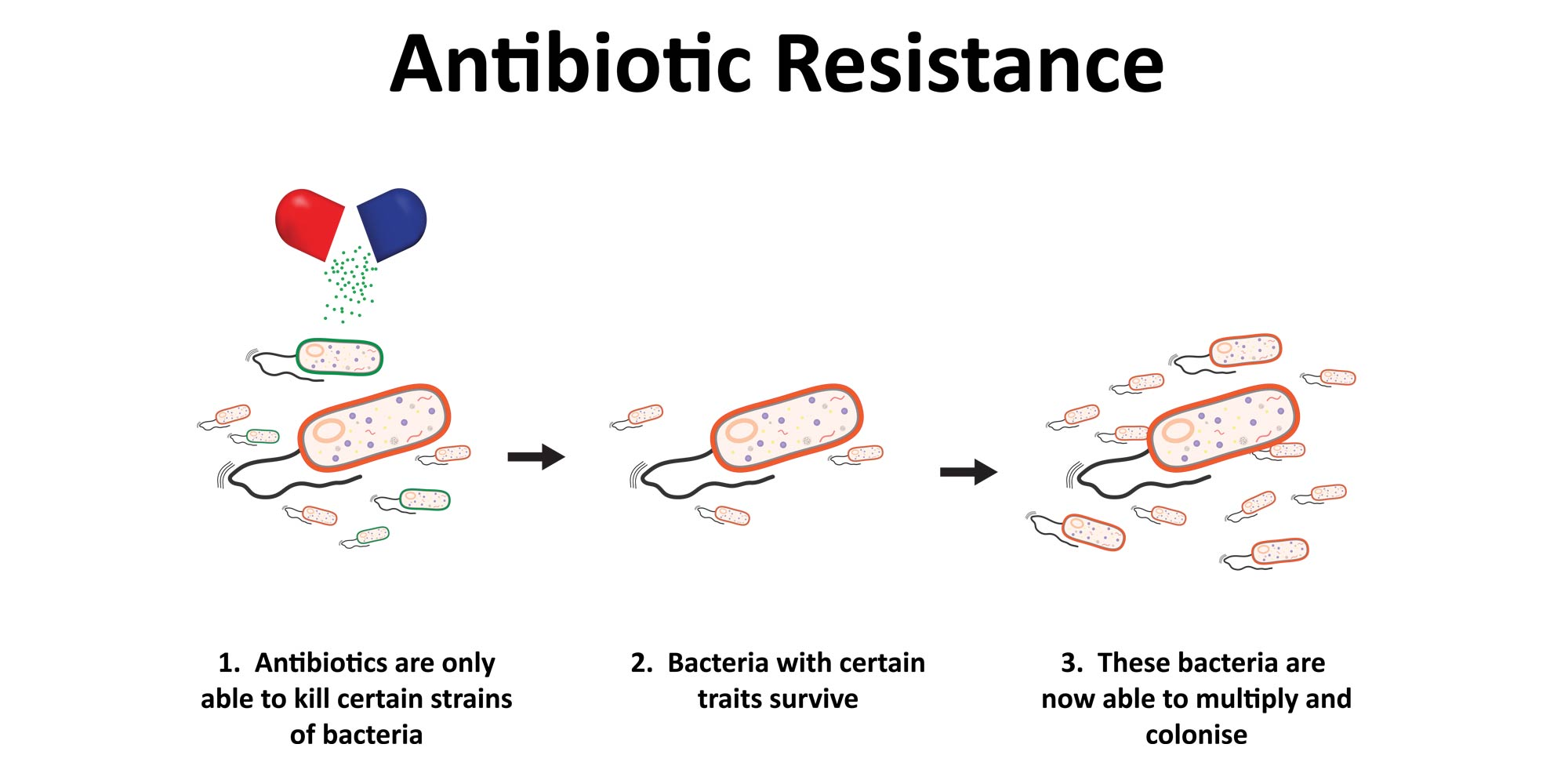 the problem of antibiotic resistance But antibiotic resistance affects everyday life: any time an antibiotic is used, the risk of developing resistance increases this resistance can spread to family and other members of the.