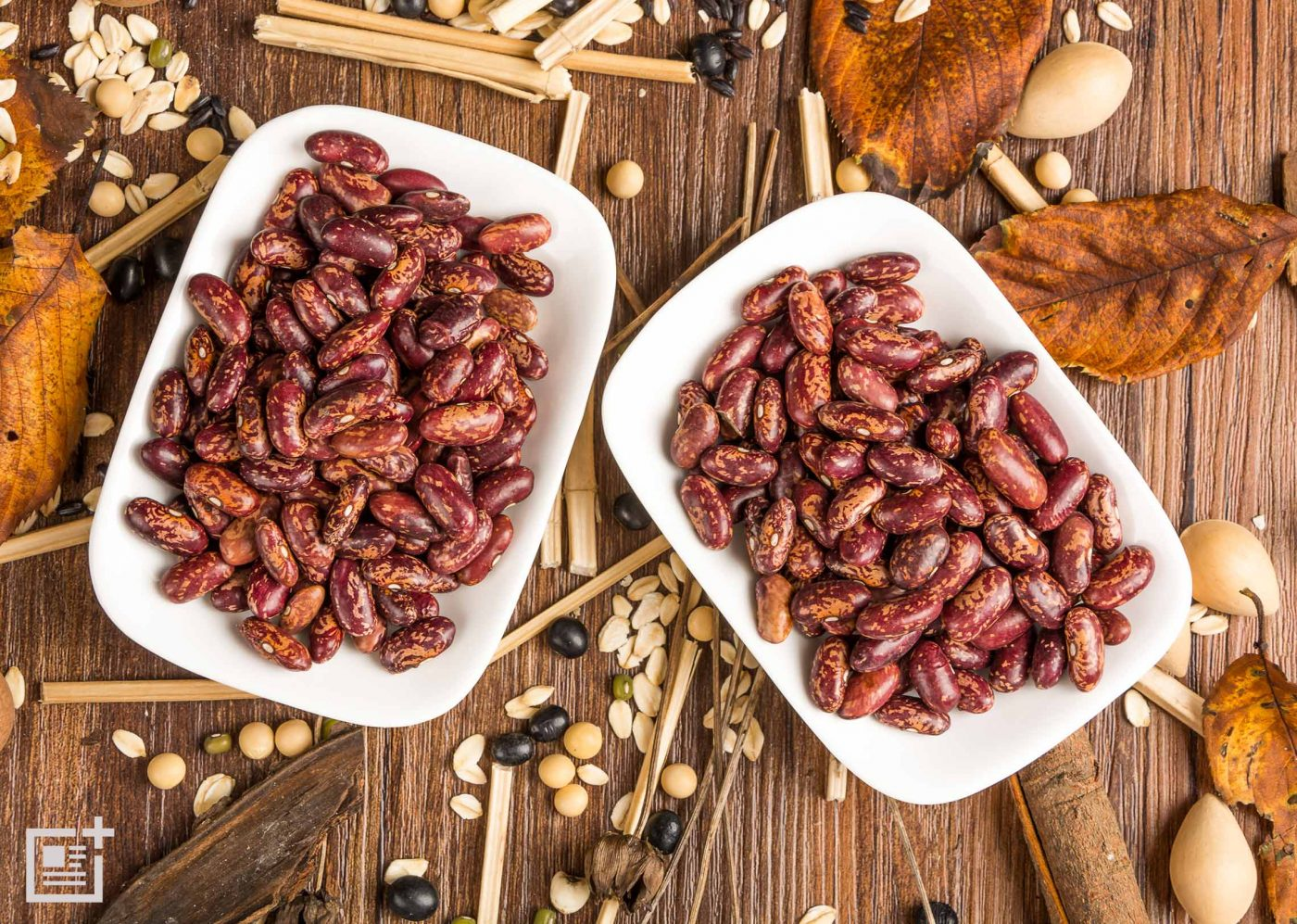 Coumest Phytoestrogens