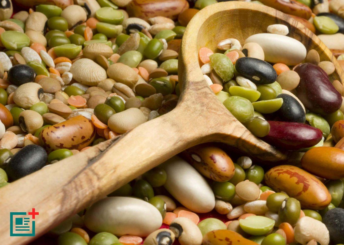 legumes-proteins